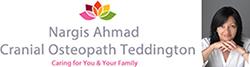 Nargis Ahmad Logo